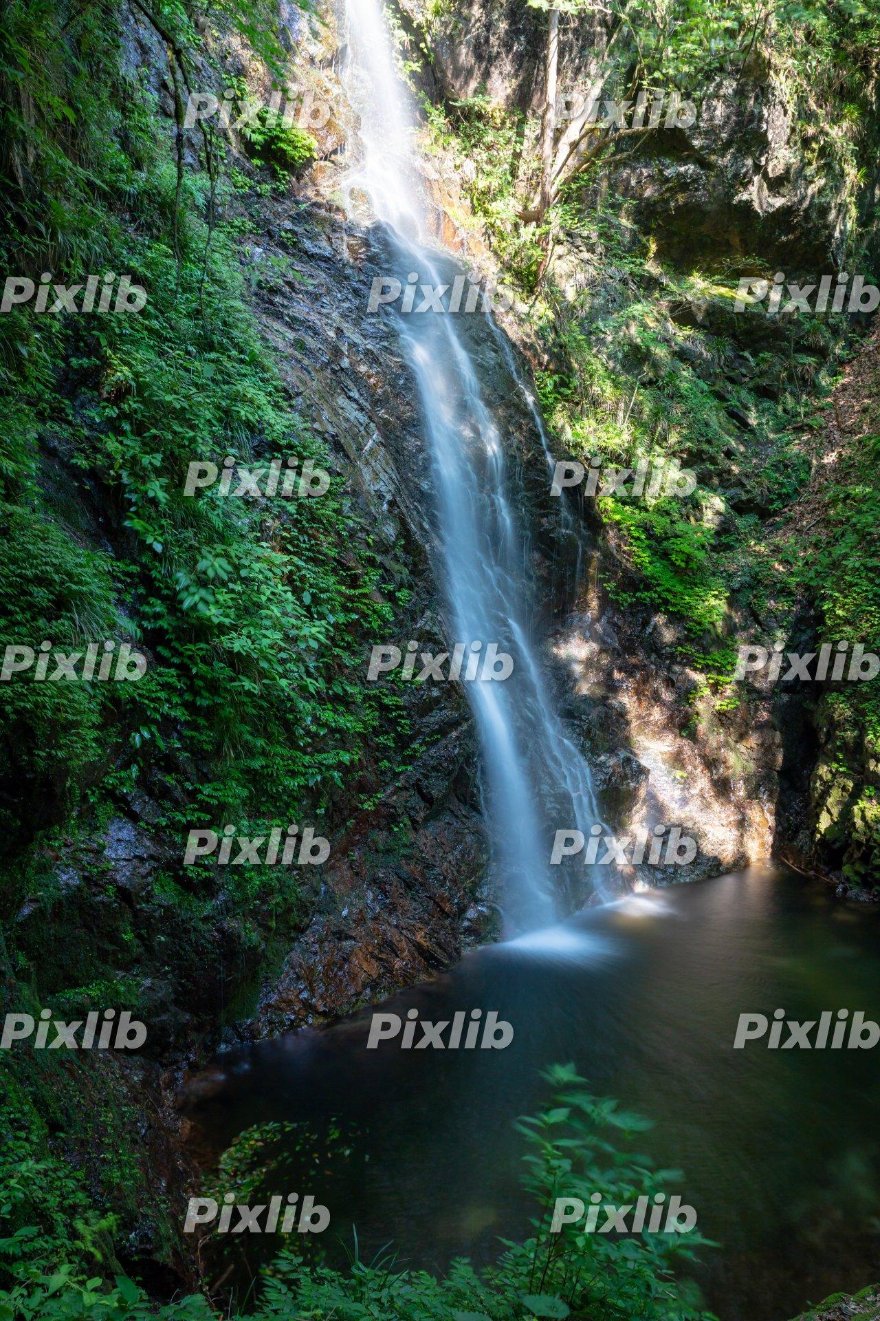 夏の払沢の滝