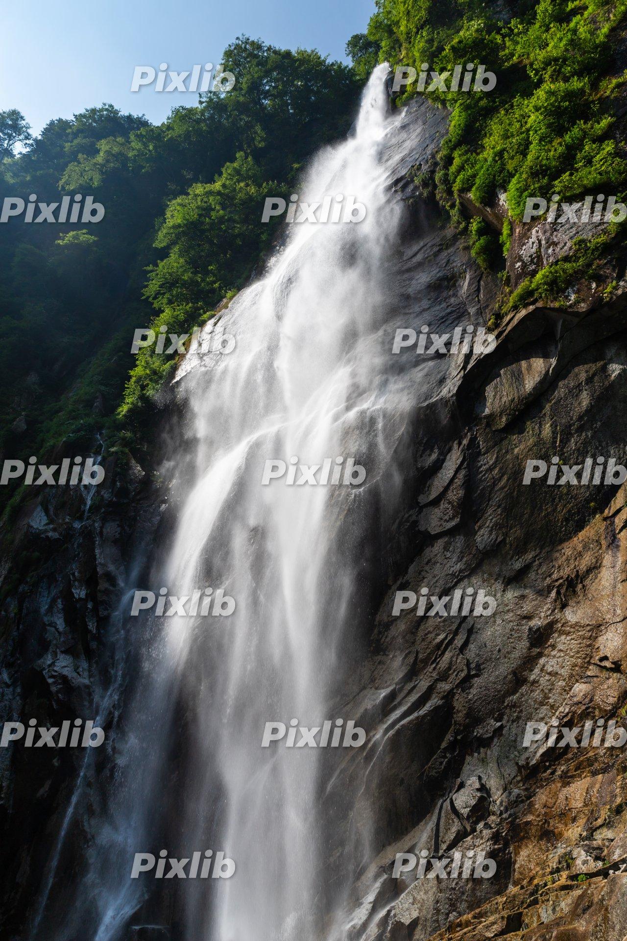 夏の北精進ヶ滝
