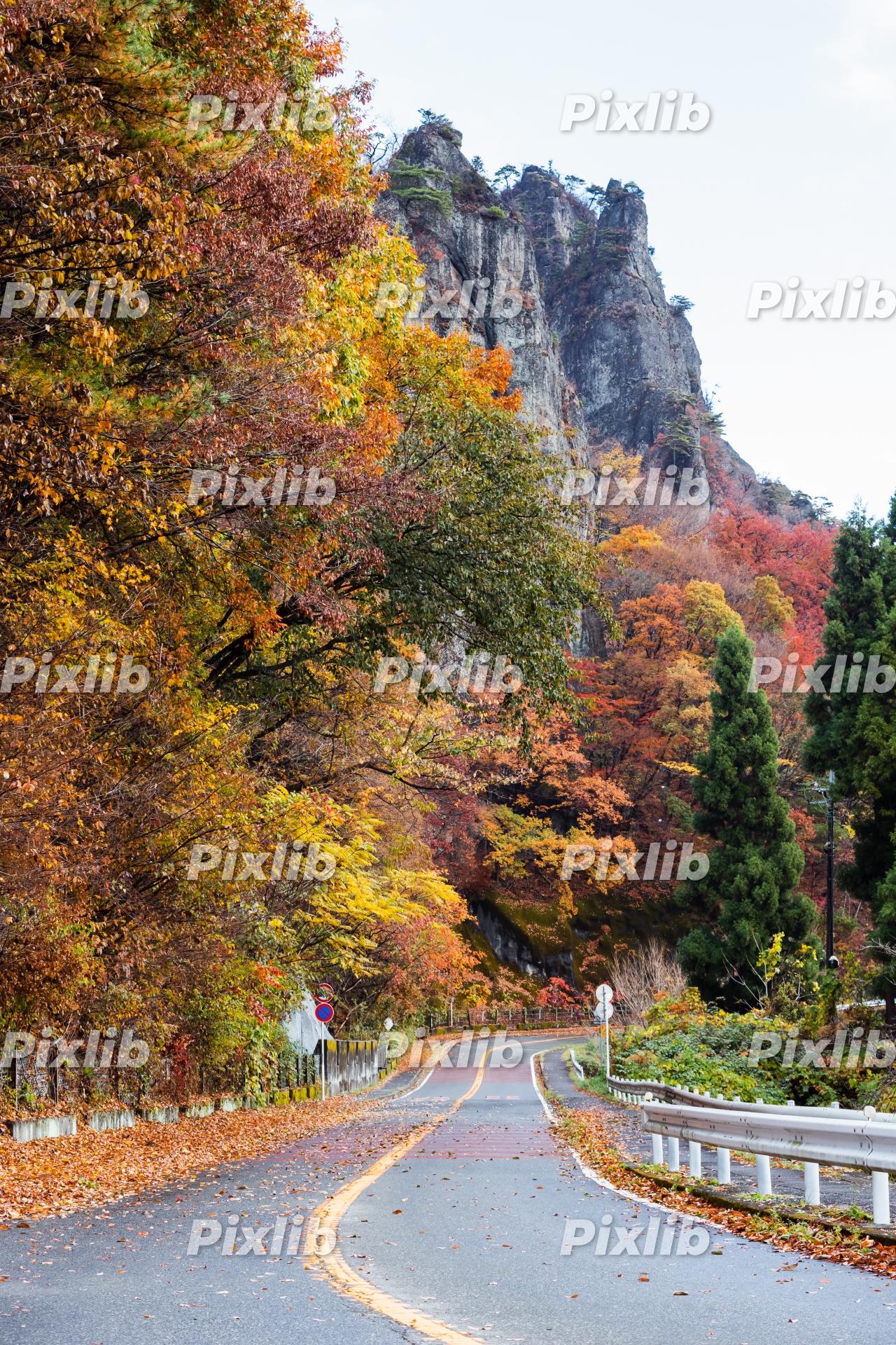 秋の上毛三山パノラマ街道
