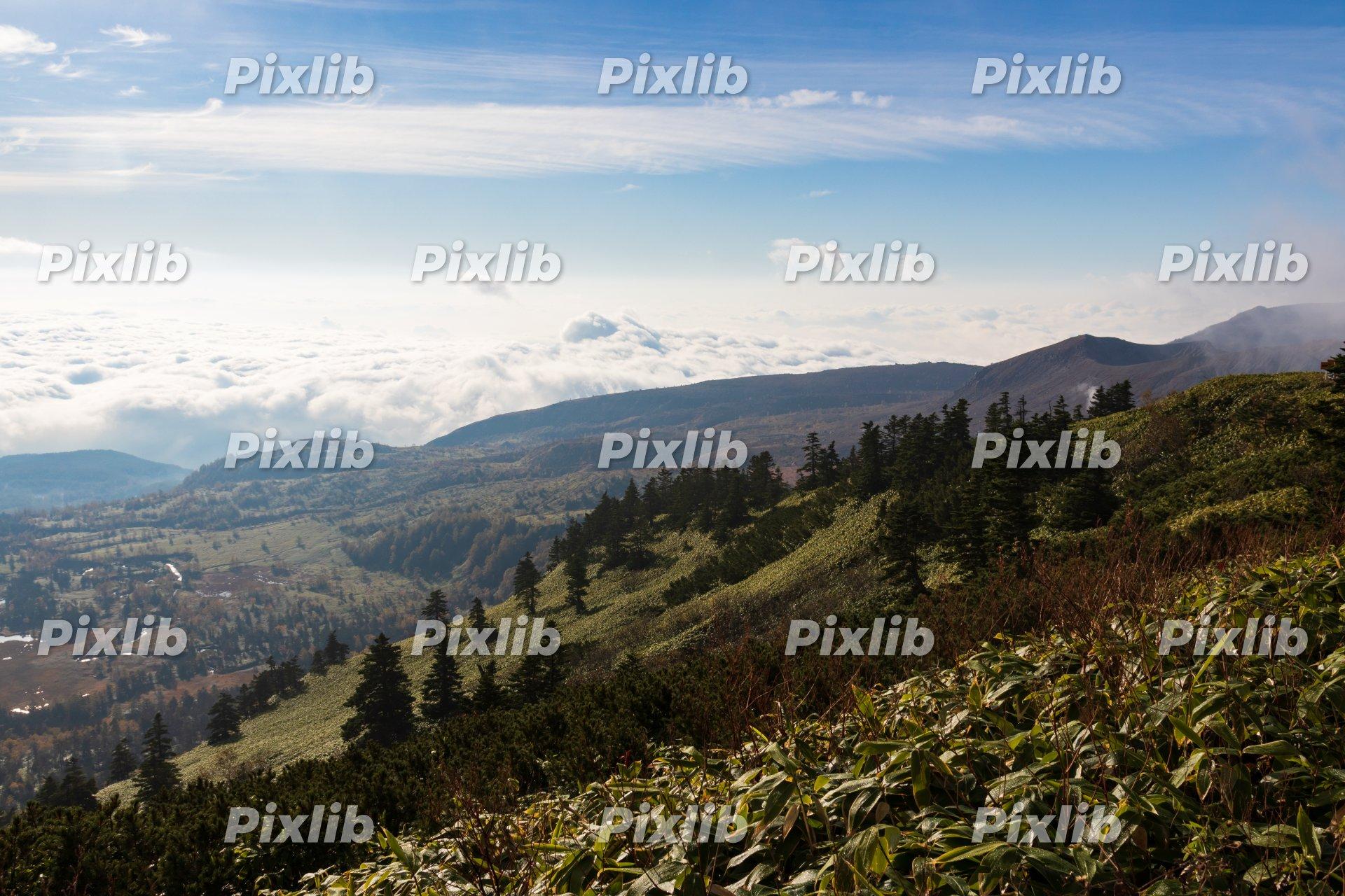 渋峠から見渡す芳ヶ平と雲海