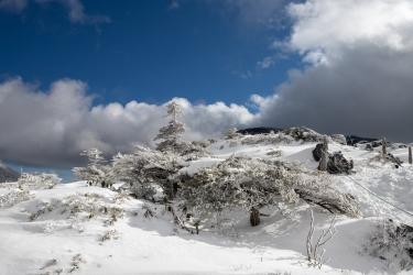 冬の北八ヶ岳