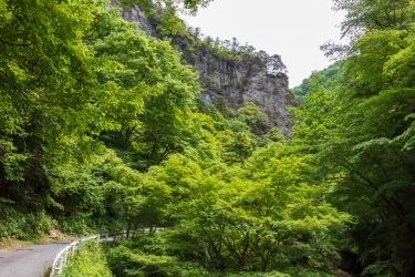 新緑と神戸岩